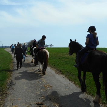 Kiddi - Treck der CV Ponyfarm im April 2018 - 05