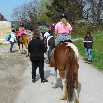 Kiddi - Treck der CV Ponyfarm im April 2018 - 08