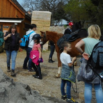 Kiddi - Treck der CV Ponyfarm im April 2018 - 09