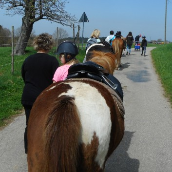 Kiddi - Treck der CV Ponyfarm im April 2018 - 10