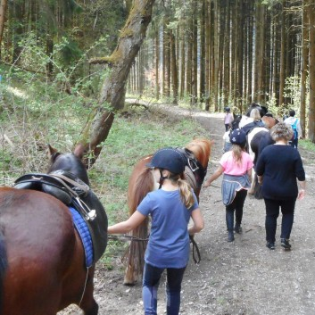 Kiddi - Treck der CV Ponyfarm im April 2018 - 11