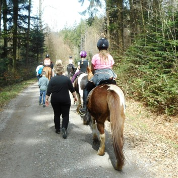 Kiddi - Treck der CV Ponyfarm im April 2018 - 12