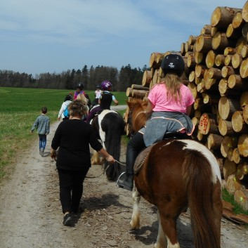 Kiddi - Treck der CV Ponyfarm im April 2018 - 14