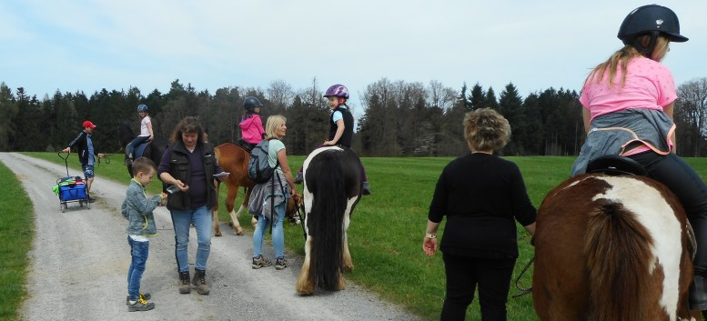 Kiddi - Treck der CV Ponyfarm im April 2018 - 15