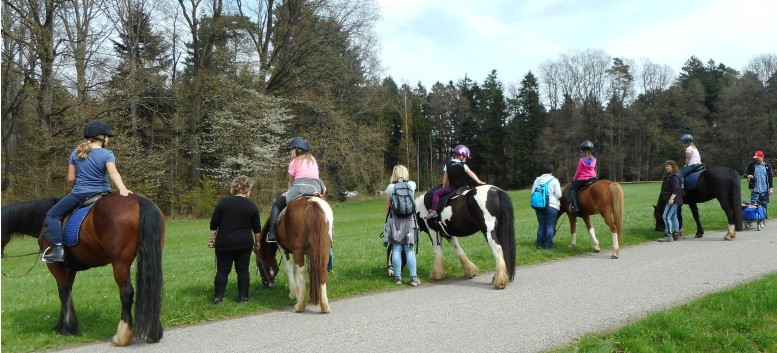 Kiddi - Treck der CV Ponyfarm im April 2018 - 16